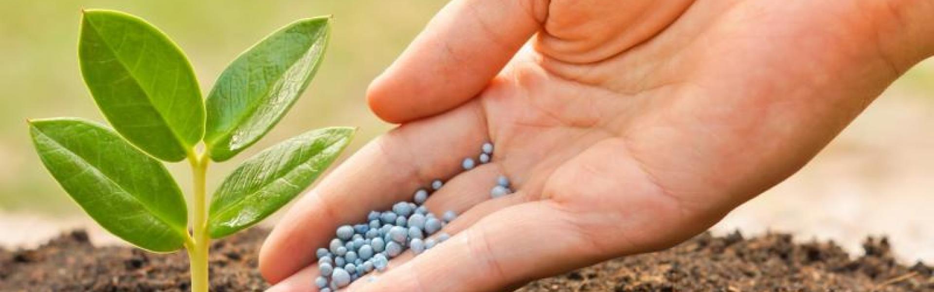 Análise de Fertilizantes